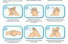 Keletas faktų apie rankų higieną