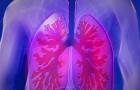 Tuberkuliozė – klastinga liga