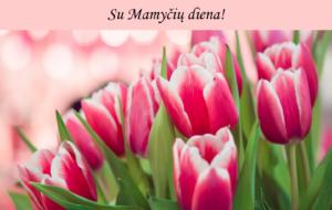Thumbnail for the post titled: Mielos Mamytės, sveikinimai Jums!